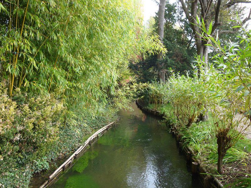 Fluss im Garten Giverny
